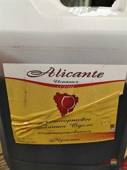 Концентрат винного сусла Alicante - фото 11765