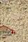 Смесь для Казылык (вяленая колбаса из конины) - фото 11452