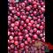 Перец розовый - 50гр - фото 11490