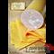 Полиамидная оболочка (для Мортаделлы)-120мм, 2м - фото 9088