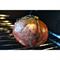 Свиные пузыри, 5 шт - фото 9966